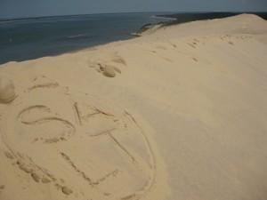 Salt in giovinezza che posa sul lato oscuro della duna di Pilat.