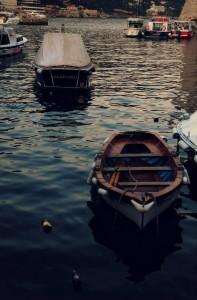 """""""Gusci di noce"""" nel porto di Dubrovnik"""