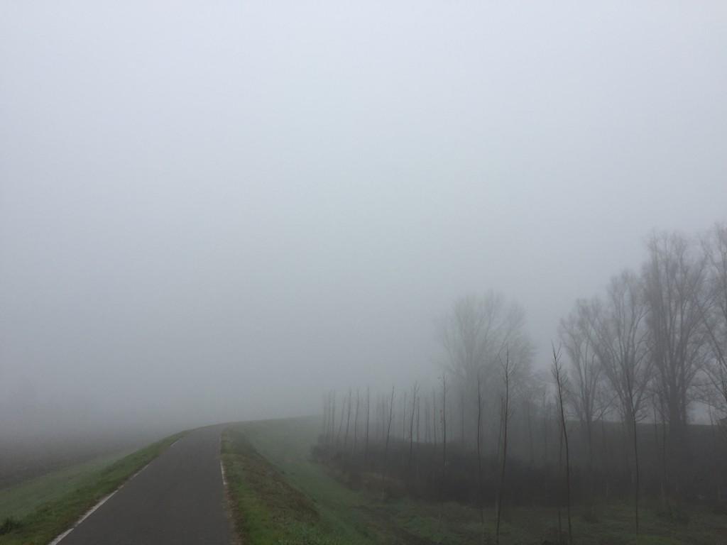 Nebbia su golena.