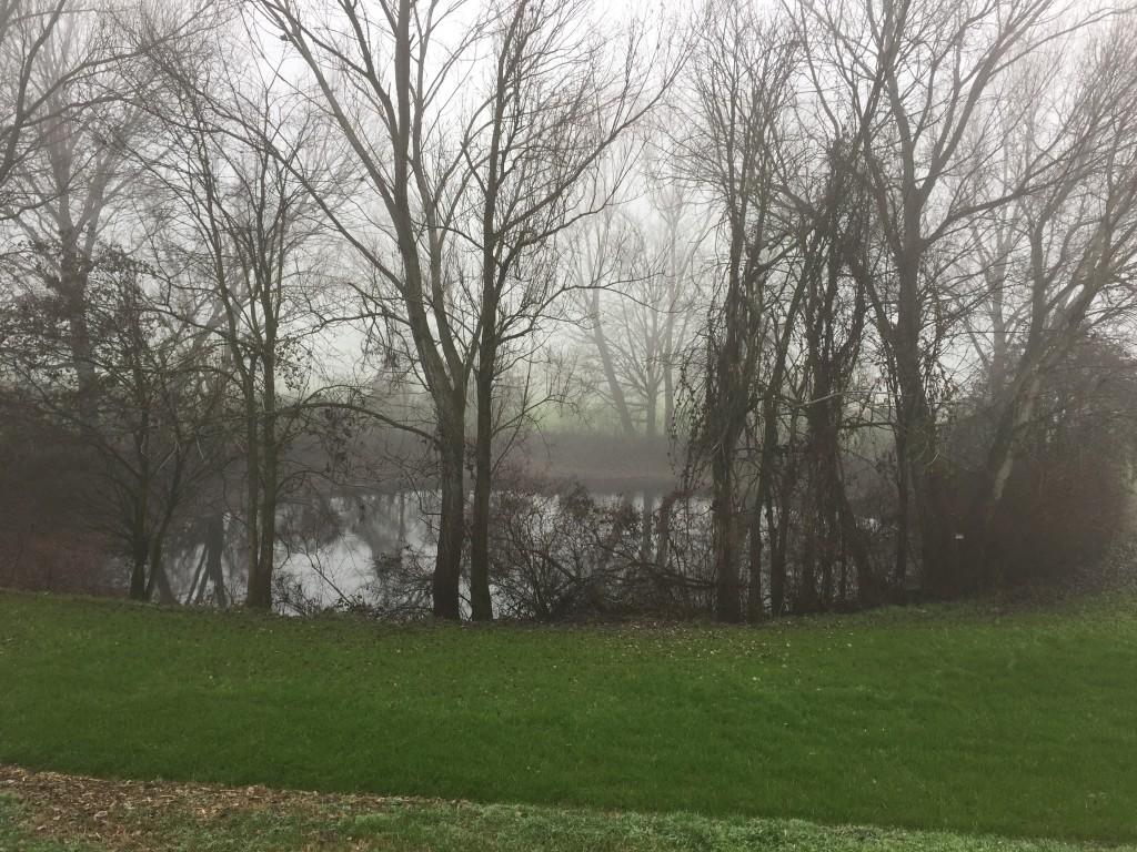 Bodrio (con nebbia, ovviamente)