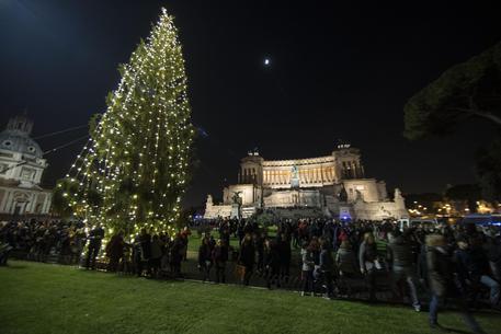 L'albero senza Natale di Roma.