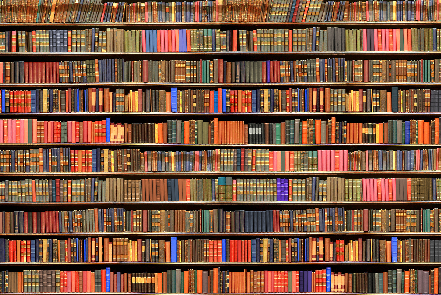 Bookshelves With Books ~ Il in libri stupefacenti salt editions