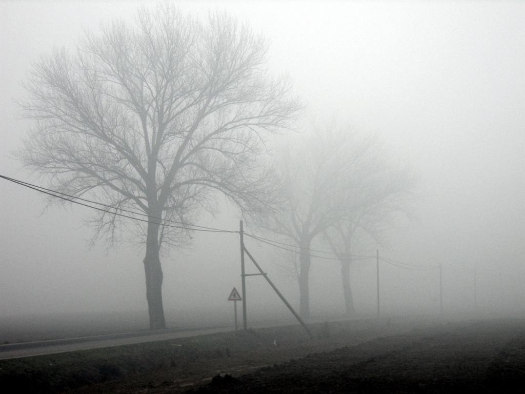 undici canzoni di merda con la pioggia dentro giorgio canali recensione