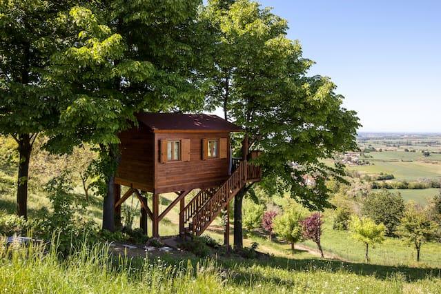 """Una casa sull'albero """"Airbnb"""" nel Monferrato - https://www.airbnb.it/rooms/880308"""