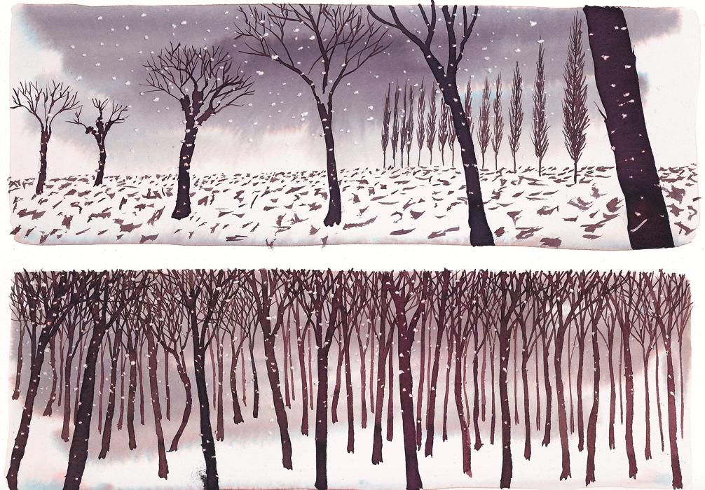 3 - inverno