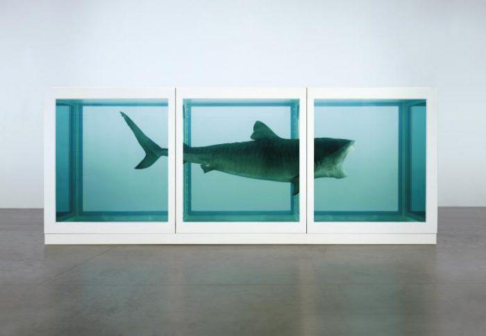 Damien Hirst | Inscatolare lo squalo
