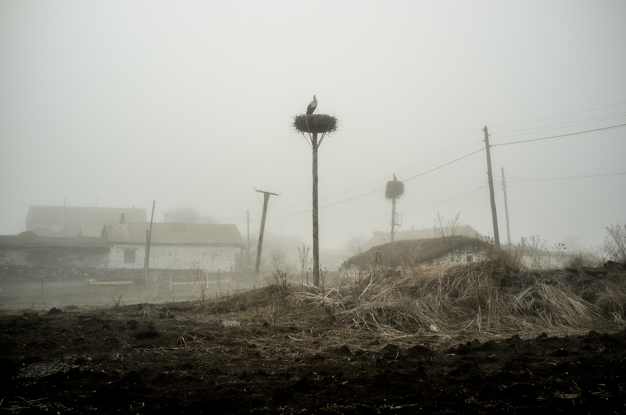 The Doukhobors' Land (1), by Natela Grigalashvili